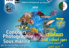 7eme édition du Concours de la photographie sous marine